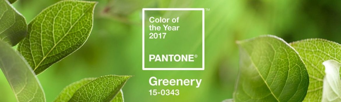 2017 TREND FROM PANTONE COLOR OF THE YEAR PANTONE COLOR OF THE YEAR 2017 TREND FROM PANTONE COLOR OF THE YEAR pantone greenery zold
